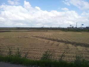 阿賀野市から新潟市江南区を望む「道の駅」開発予定地